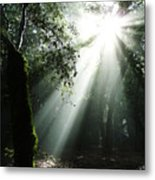 Light Angel Metal Print