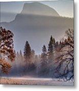 Light Rays In Yosemite Ground Fog Metal Print
