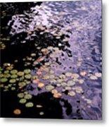 Lilies In The Water Metal Print