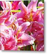 Lily Garden Floral Art Prints Pink Lilies Baslee Troutman Metal Print