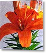 Lily In Color Pencil Metal Print