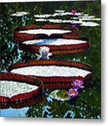 Lily Pad Highlights Metal Print