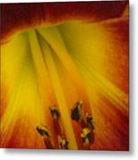 Lip Of The Lily Metal Print