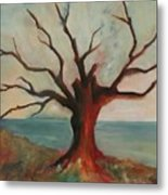 Lone Oak - Gulf Coast Metal Print