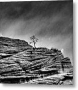 Lone Tree Rid Metal Print