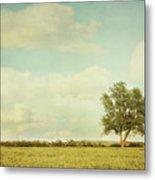Lonely Tree In Meadow With Vintage Look Metal Print by Sandra Cunningham