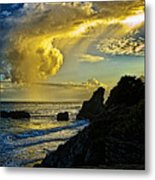 Looking At The Sky Metal Print