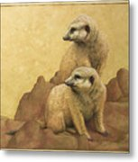 Lookouts Metal Print by James W Johnson
