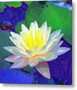 Lotus Grace Metal Print