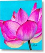 Lotus  Metal Print by Laura Bell