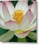 Lotus Of Awakening Metal Print