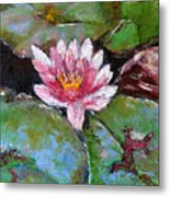 Lotus Of The Pond Metal Print