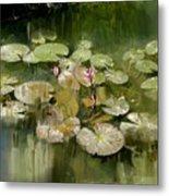 Lotus Pond 1 Metal Print