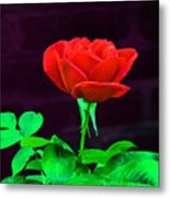 Love Is A Rose Metal Print