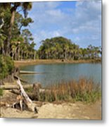 Lowcountry Lagoon Metal Print