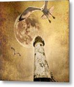 Lunar Flight Metal Print by Meirion Matthias