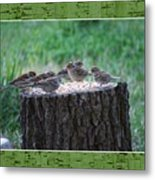 Lunch Time At The Tree Log Diner Metal Print