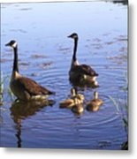 Ma N Pa Geese And All The Little Ones Metal Print