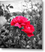 Magic Flower Metal Print