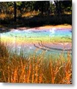 Magic Pond Metal Print