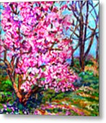 Magnolia - Early Spring Metal Print