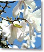 Magnolia Flowers Floral Art Spring Flowering Tree Baslee Troutman Metal Print