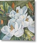 Magnolias Five Metal Print