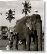 Mahout And Elephant Metal Print