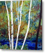 Maine Birch Stream Metal Print