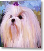 Maltese Portrait - Square Metal Print