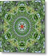 Mandala July 16 Metal Print