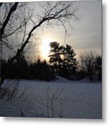 March Sunrise Behind Pines Metal Print