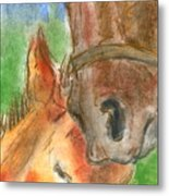 Mare And Foal Metal Print