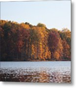 Maryland Autumns - Clopper Lake - Fall Bloom Metal Print