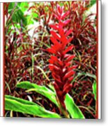Maui Tropical Floral Metal Print