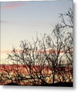 Mesquite Sunset Three Metal Print