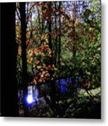 Michigan Fall Colors 1 Metal Print