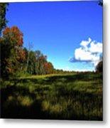 Michigan Fall Colors 12 Metal Print