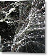 Midnight Snow 13 Metal Print