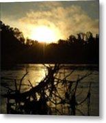 Mississippi River Sunrise Tree Roots Metal Print