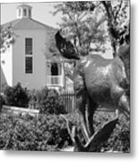 Misty Of Chincoteague Metal Print