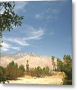 Mojave Metal Print