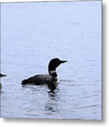 Mom And Baby Loon Metal Print