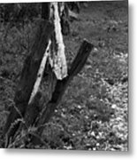 Momsvisitfence2 Metal Print