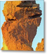 Monkey Face Pillar At Smith Rock Closeup Metal Print