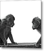 Monkeys Getting Ready For Fight At Chinese Temple Metal Print