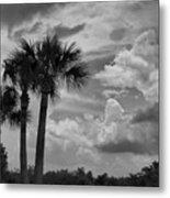 Moody Florida Sky Metal Print