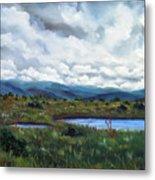 Moody Wetlands Metal Print