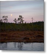 Moon Over Wetlands Metal Print