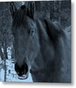 Moonlit Stallion Metal Print